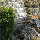 Albion Falls - The Descent - 2 © by © Hany G. Jadaa © Prince John Photography