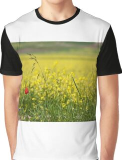 Red poppy in a yellow field Graphic T-Shirt
