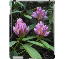Opening Rhododendron Buds iPad Case/Skin