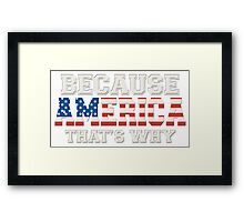Because America That's Why Framed Print