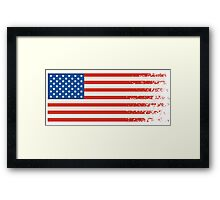 America Graffiti Flag Framed Print