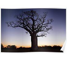 Velvet  Sunset Poster