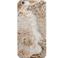 Conversation Starter 2 iPhone Case/Skin