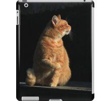 Profile of ginger cat iPad Case/Skin