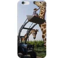 Tickle A Giraffe iPhone Case/Skin