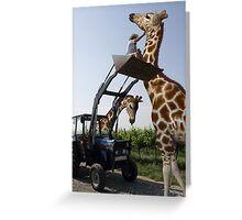 Tickle A Giraffe Greeting Card