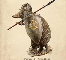 Armadillo by Eric Fan