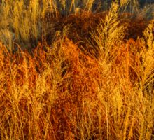 Flaming Grass Sticker