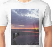 Indy at sunset Unisex T-Shirt