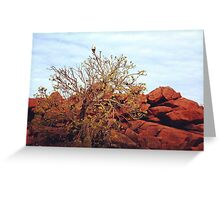 Withnell Bay - Dampier, WA Greeting Card