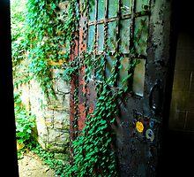 door to freedom by Kymberly Janisch