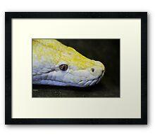 A Perfect Python Framed Print