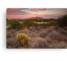 Sunset at the Oasis Canvas Print