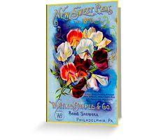 """""""W. ATLEE BURPEE"""" Sweet Peas Advertising Print Greeting Card"""