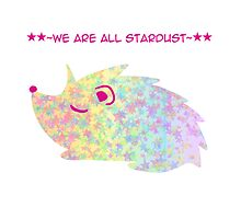 We are all stardust by Nicole Sánchez