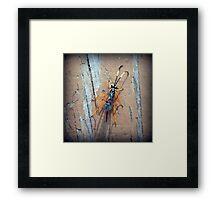 Parasitic Wasp Framed Print