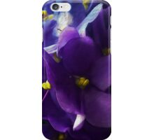 Blue Violets In The Window iPhone Case/Skin