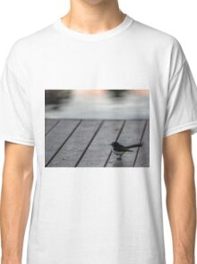 Willy Wagtail at the Royal Botanic Gardens, Melbourne Classic T-Shirt