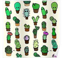 Cacti Galore! Poster