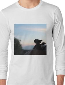 Tiny Toothless watching the sunset. Long Sleeve T-Shirt