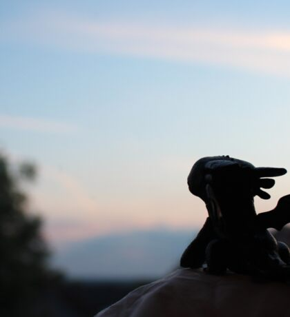 Tiny Toothless watching the sunset. Sticker