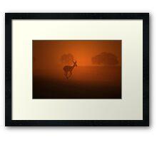 Impala - African Wildlife Background - Golden Dust Framed Print