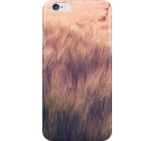 golden fields  iPhone Case/Skin