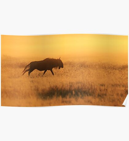 Blue Wildebeest - African Wildlife - Nature's Faded Gold Poster