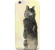 Simba the Cat Phone Case iPhone Case/Skin