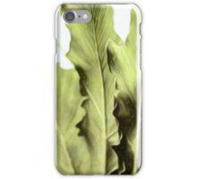 palm leafs iPhone Case/Skin