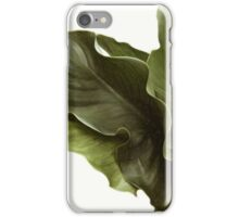calla lily leaves iPhone Case/Skin