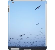 Common crane (Grus grus). iPad Case/Skin