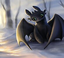 Toothless In Snow by Kara  Davison