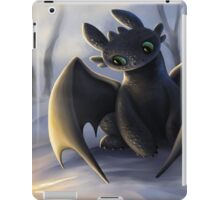 Toothless In Snow iPad Case/Skin