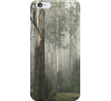 Whist iPhone Case/Skin