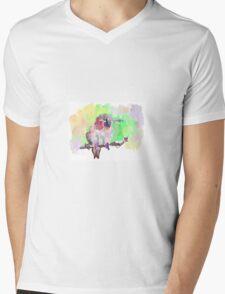 Colourful Bird Mens V-Neck T-Shirt