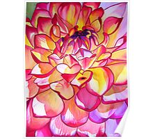 Pink Dahlia macro flower watercolour art Poster