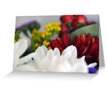 Macro on colorful flower petals. Greeting Card