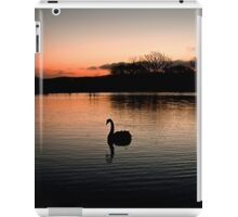 Solo at Sunset iPad Case/Skin