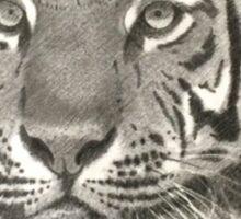 Liberate GVZoo Animals Tiger Sticker
