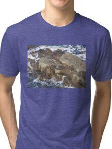 New products from Tassie Tawnie aka Susan Parsons Tri-blend T-Shirt