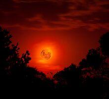 Fiery Blood Moon - Melbourne, Mt Dandenong, Victoria Australia by Ben  Cadwallader