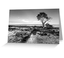 Tenby Point - Mangrove Sunset Black and White Greeting Card