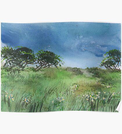 Meadow Landscape Poster
