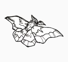 moth by Ashley Peppenger