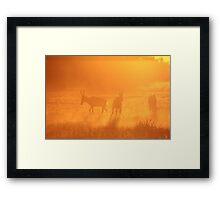 Red Hartebeest - Sunset Gold Silhouette - African Wildlife Framed Print