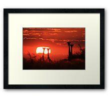 Giraffe - Sunset Love of Red - African Wildlife Background Framed Print
