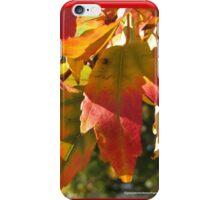 Autumnal Blaze iPhone Case/Skin
