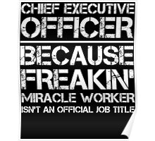CHIEF EXECUTIVE OFFICER BECAUSE FREAKIN' MIRACLE WORKER ISN'T AN OFFICIAL JOB TITLE Poster