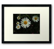 Margarets Framed Print
